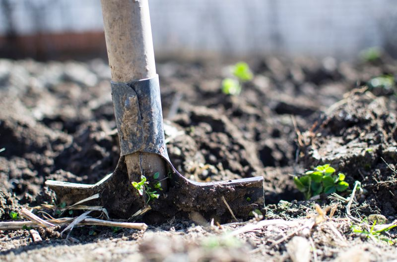 The Benefits of Gardening For Physical and Mental Health