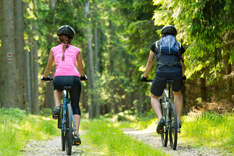 People cycling in the forest