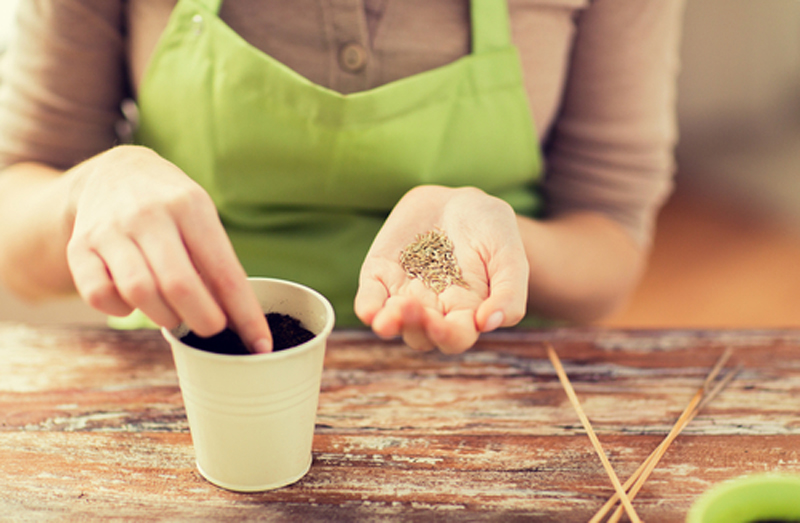 sewing seeds helps with manual dexterity